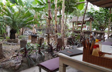 Der Garten im Buddha Belly auf Cát Bà Island in der Ha-Long-Bay in Vietnam