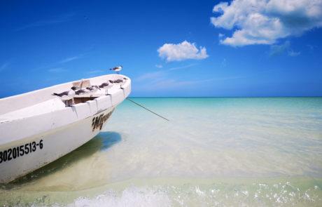 Fischerboot mit Möwen und türkisfarbenes, kristallklares Wasser am weißen Sandstrand auf der Isla Holbox in Mexiko