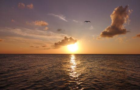 Sonnenuntergang über dem Meer auf der Isla Holbox in Mexiko