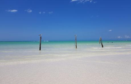 Weißer Sandstrand und Möwen auf der Isla Hobox in Mexiko