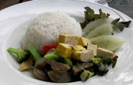 Gelber Thailand Tofu Kurkuma vegan