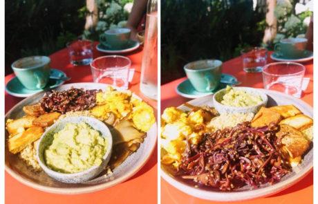 12 Karma Food Frühstücksteller mit Guacamole